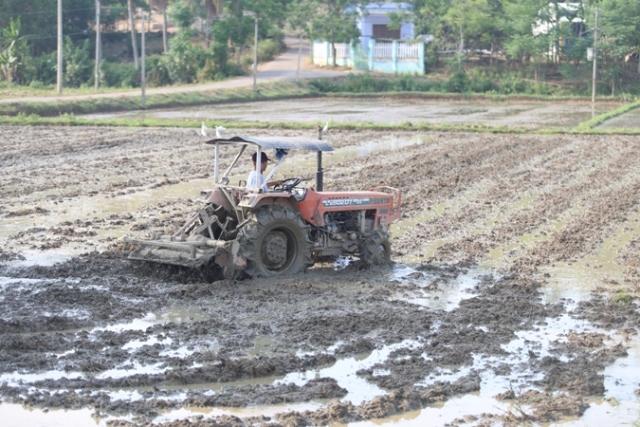 Tiếp tục đổi mới chính sách phát triển nông nghiệp, nông thôn